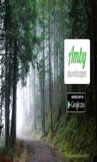 Amby Soundscapes