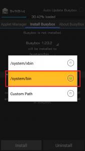 Choose System Bin