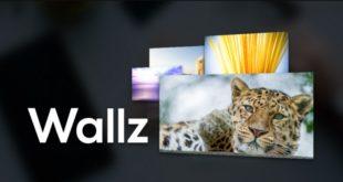 1_Wallz