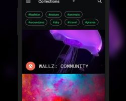 Wallz Pro: Wallpaper APP