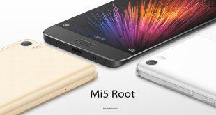 Mi5 root