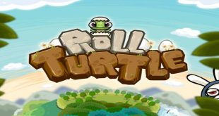 6_Roll_Turtle