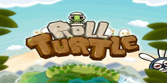 6_Roll_Turtle