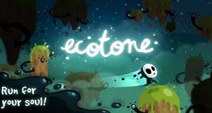 ecotone Pocket