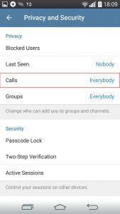 Telegram Voice Calls Privacy