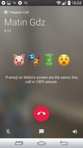 Telegram Voice Call Security