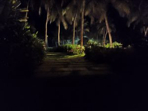 لنز اصلی، نور کم، با Night mode